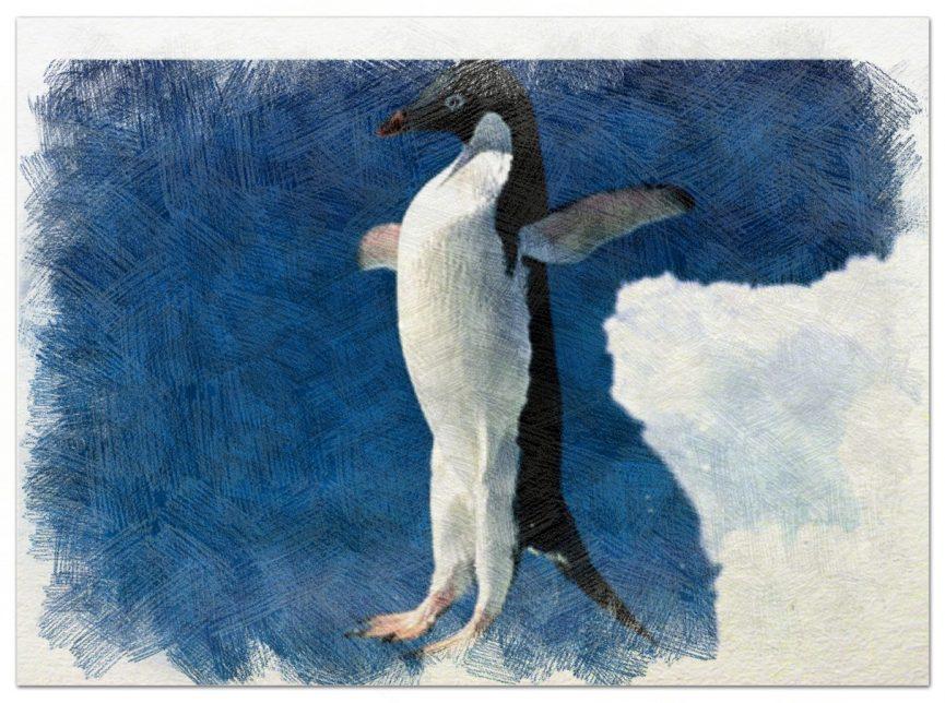 Si eres pingüino no pretendas volar